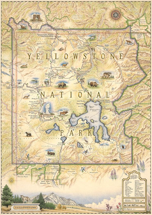 Hand-Drawn Map of Yellowstone National Park | Distinctly Montana
