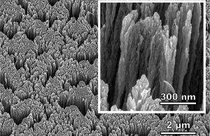 Nanoscale image of palladium metal surface