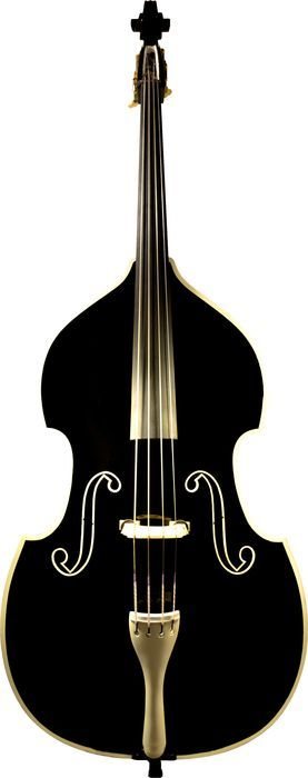Tuxedo Double Bass...beautiful...might be the next purchase for Amica  http://www.amicajazzduo.com