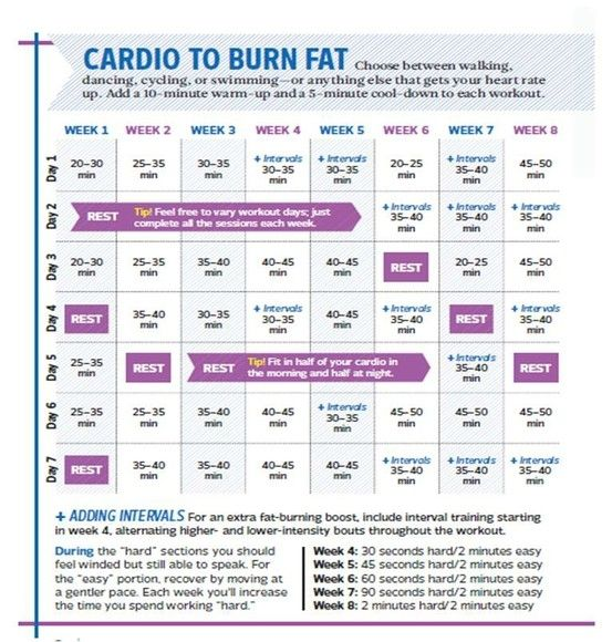Cardio Workouts That Burn Fat
