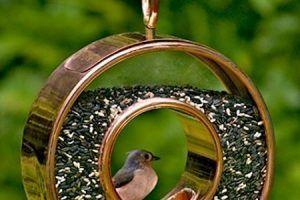 Modern Bird Feeders Attract Birds and Add Beautiful Yard Decorations to Backyard Designs – Lushome