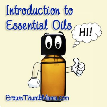 Introduction to Essential Oils: what, how, and why, from one mom to another. So much useful information!
