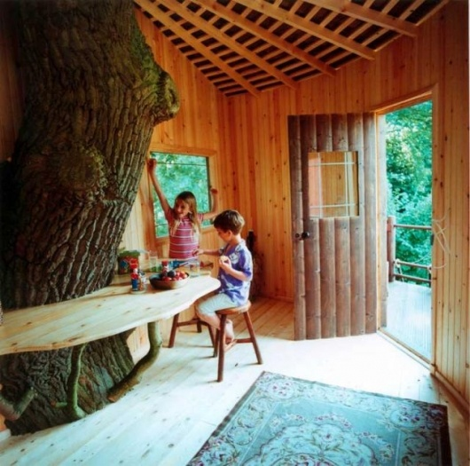 The Magic of a treehouse