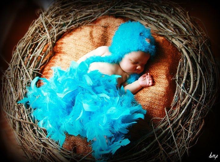Baby Crochet Fuzzy Blue Bird Hat