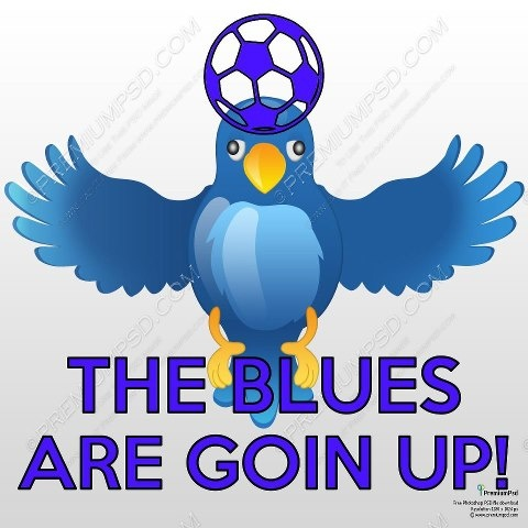 Congratulations to Cardiff City for their promotion to the Premiership last night, Lauren in the Breed Office is a happy girl today!