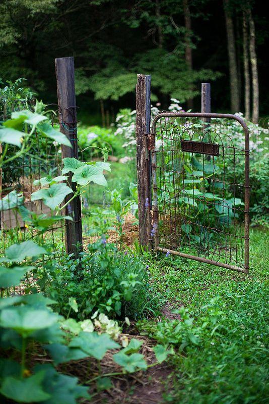 Rusty old garden gate...