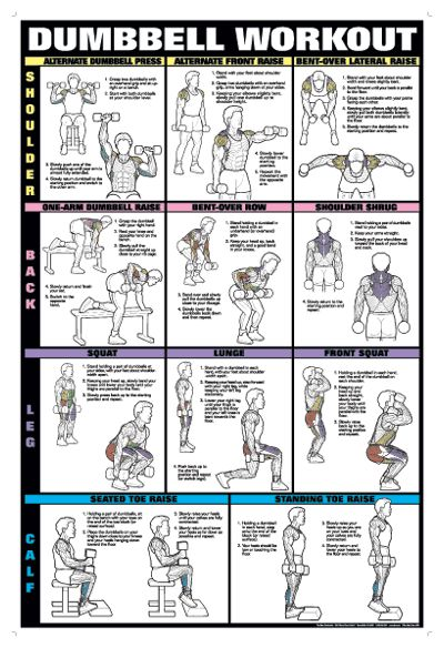 back workout - Google Search