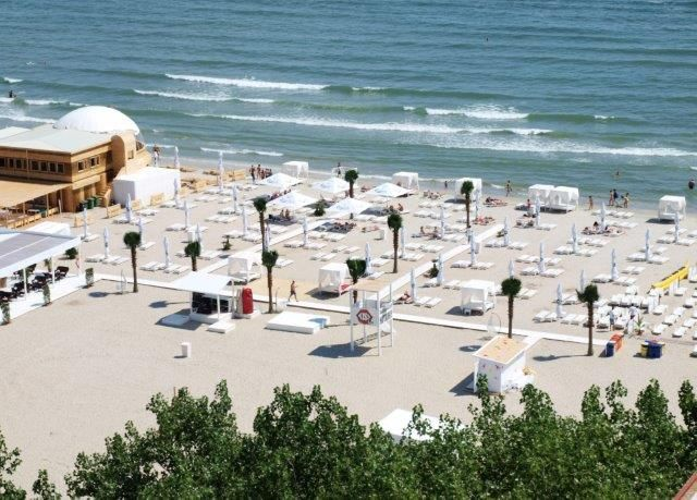 design hotels, terraces and seaside beaches, Constanta Romania - artificial palm