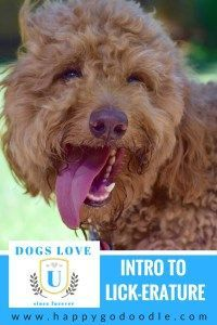 Funny parodies of books you might find if your dog attended Intro to Licker-ature class at Dogs Love U. A humorous and entertaining spin on heading back to school.