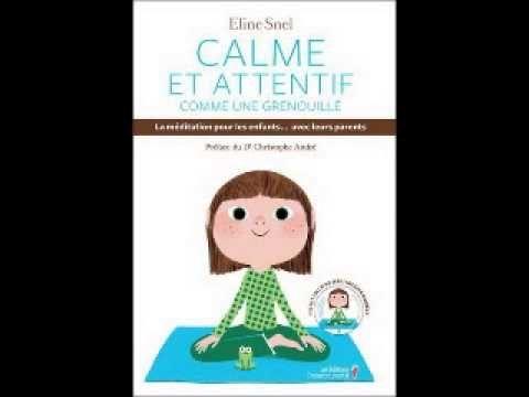 Chronique Livre : Calme et attentif comme une grenouille -  invitée Mari...