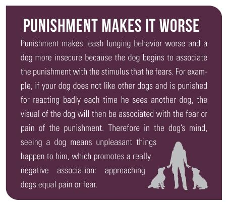 Leash Aggression and how to deal - Punishment Makes It Worse Punishment makes leash lunging behavior worse and a dog more insecure because the dog begins to associate the puni...