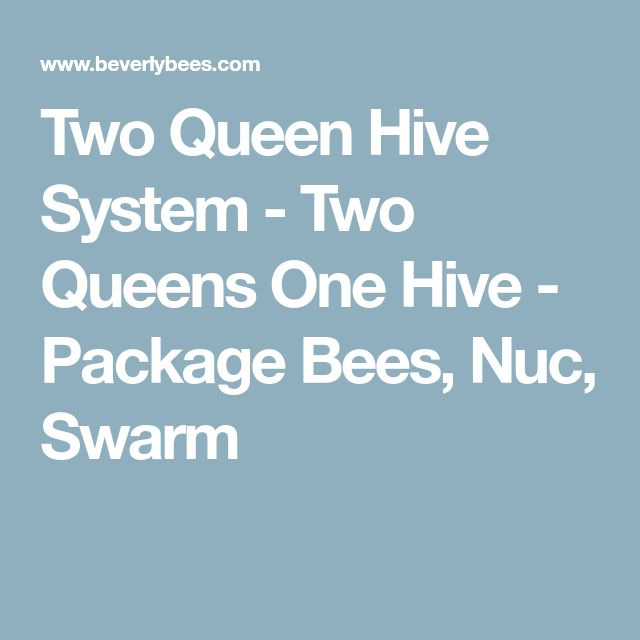 Two Queen Hive System - Two Queens One Hive - Package Bees, Nuc, Swarm