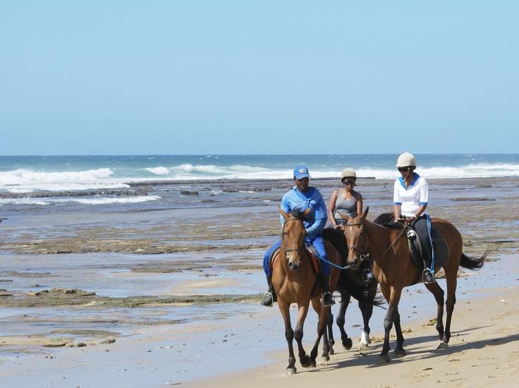 Wild Coast of SA