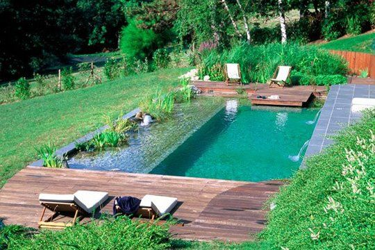 Les piscines naturelles sont des piscines totalement écologiques, sans produits chimiques./ No chemicals!