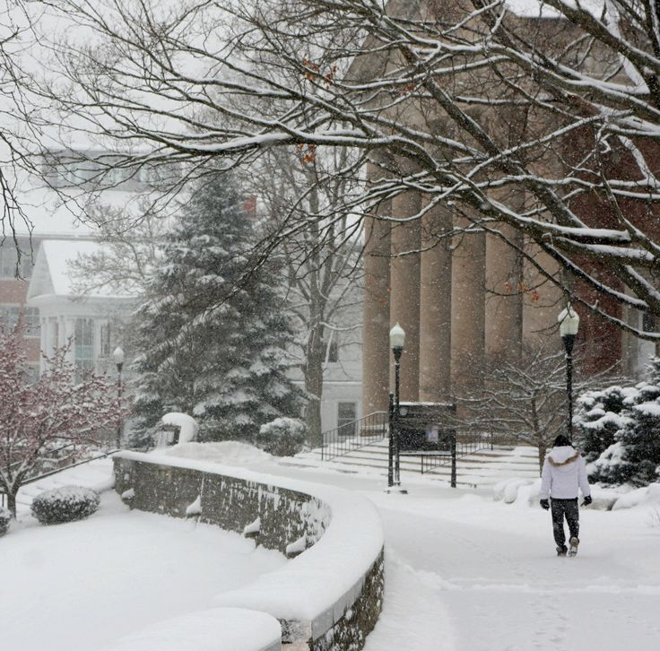 Trees really make this snowy scene at Denison University, a Tree Campus USA going on 4 years! #winter | Via Denison University, photo credit James Hale