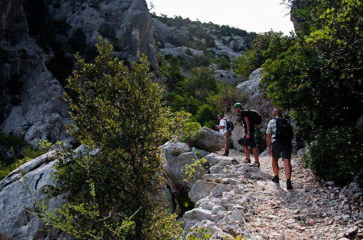 The wonderful trail from Cala Luna to Cala Sisine in eastern Sardinia