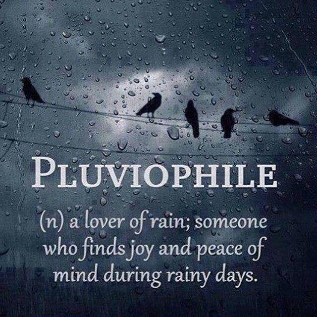 best 25 i love rain ideas on pinterest love rain rainy