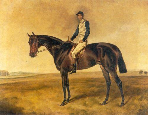 Australian champion colt, POSEIDON, winner of the 1906 VRC Melbourne Cup.