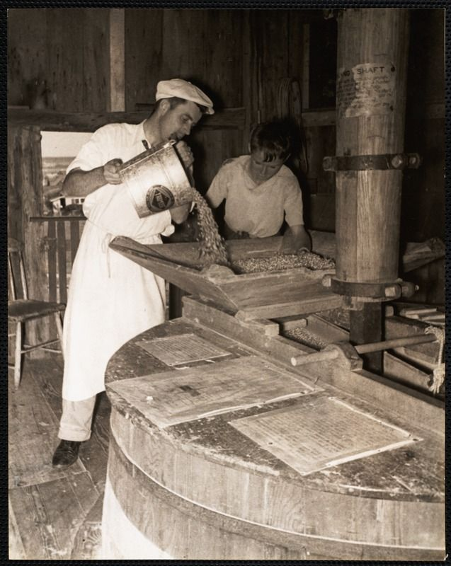 The Old Mill, Nantucket -  Adding grain to the hopper, c. 1930s. https://www.digitalcommonwealth.org/search/commonwealth:cc08hp98b  #windmill