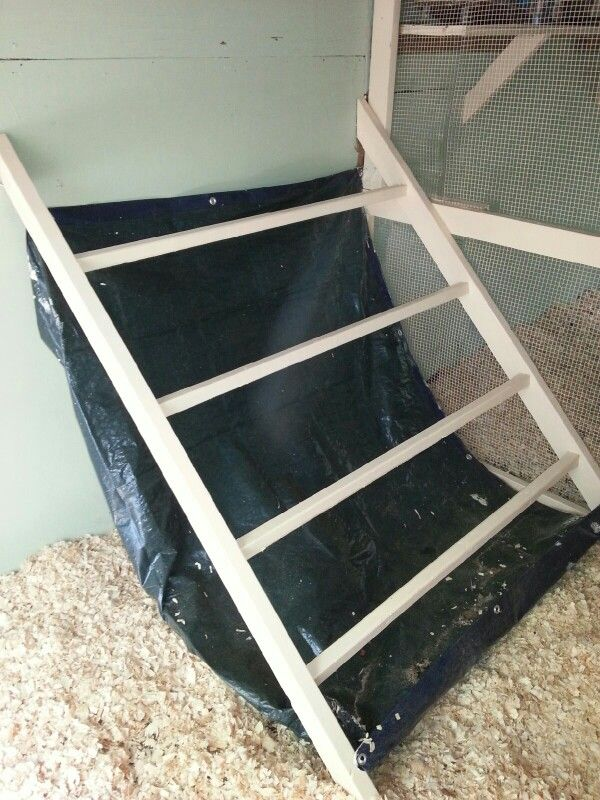 Our new chicken coop roost should easily and comfortably hold 20+ chickens and the poop hammock makes cleaning a breeze.