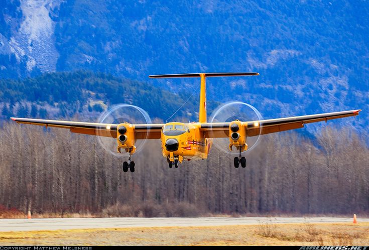 De Havilland Canada CC-115 Buffalo (DHC-5) - Canada - Air Force | Aviation Photo #2797603 | Airliners.net