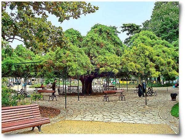 (: Jardim do Principe Real, Lisboa