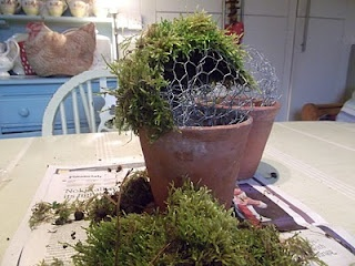 Moss Pots - Love These