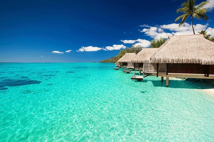 Tahiti The largest island in French Polynesia, Tahiti's warm, bath-like waters and turquoise tides will surely wash away those winter blues. Captivating is the Tahitian dance where grass-skirted hips shake from side to side, Tahiti's romantic ambience with an array of spa treatments and its colourful and charming Polynesian culture.