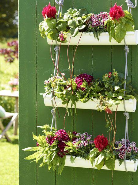 Tolle Idee: eine alte Regenrinne zum Bepflanzen benutzen!