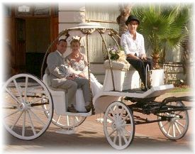 Horse and Carriage Hire - Weddings, Special Occasions