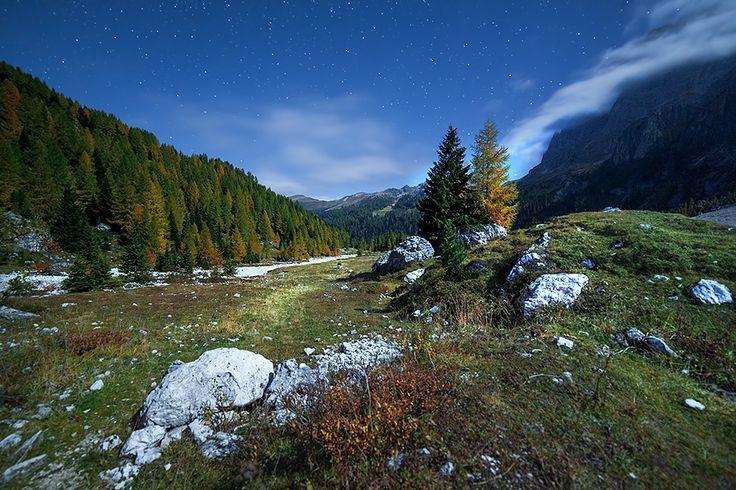 Notte di luna piena in Val Venegia | Parco Naturale Paneveggio e Pale di San Martino