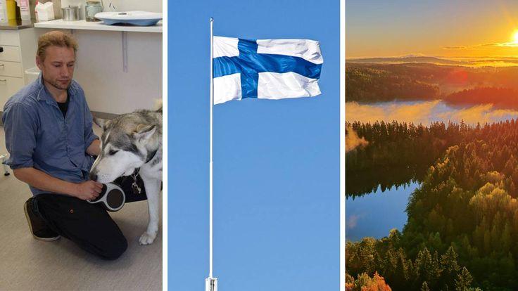 Finnland testet das Grundeinkommen. Juha Järvinen ist einer von 2000 Arbeitslosen, die das Geld bekommen. Nun berichtet er, wie das Grundeinkommen sein ...