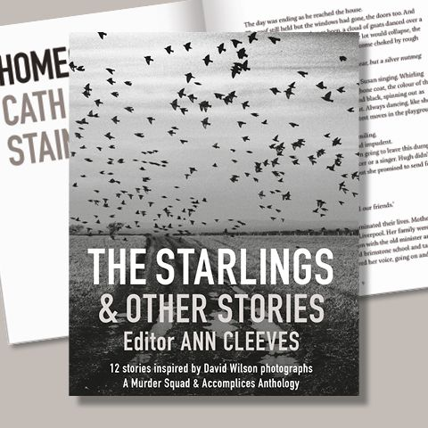 The Starlings & Other Stories Ann Cleeves Crime Fiction Graffeg