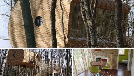 Bremen - Baumhaushotel, TreeInn, Treeinn, Treein, Lodge, Hotel, Stelzenhaus, Wolfcenter, Wolfsgehege, Hotel im Wolfsgehege, Luxushotel, Wildnis