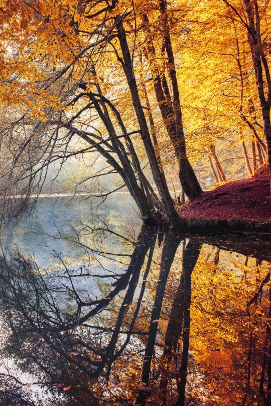❧ L'automne ❦ 3