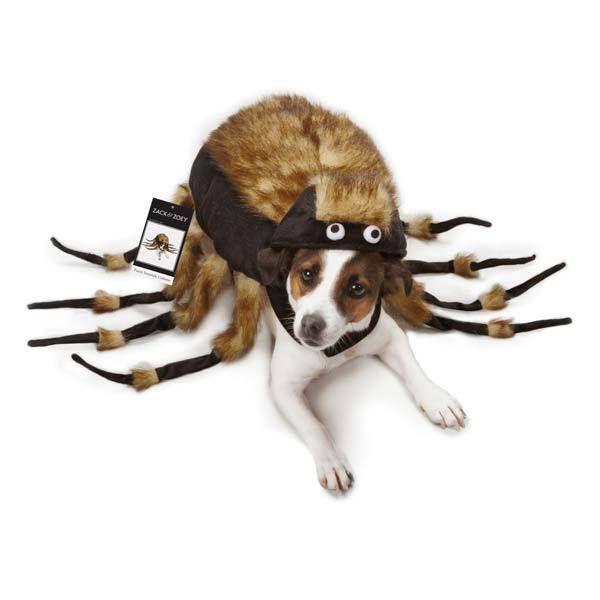 Dog Halloween Costume Fuzzy Spider Tarantula Pet Costumes spiders XS - L #BeeGood