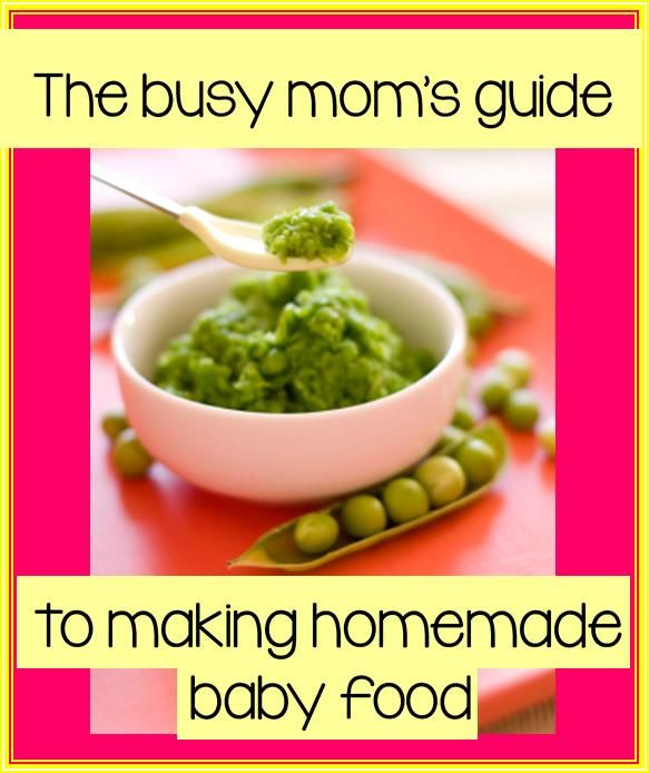 You don't need to be a crunchy granola mom to make your own baby food. Step-by-step guide including what fruits and veggies to use, how to puree (without the expensive baby blenders) and when to introduce certain foods. SUCH a great resource!!