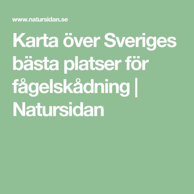 Karta över Sveriges bästa platser för fågelskådning | Natursidan