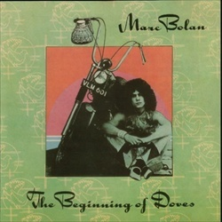 263 Best Images About Marc Bolan Trex On Pinterest Mad