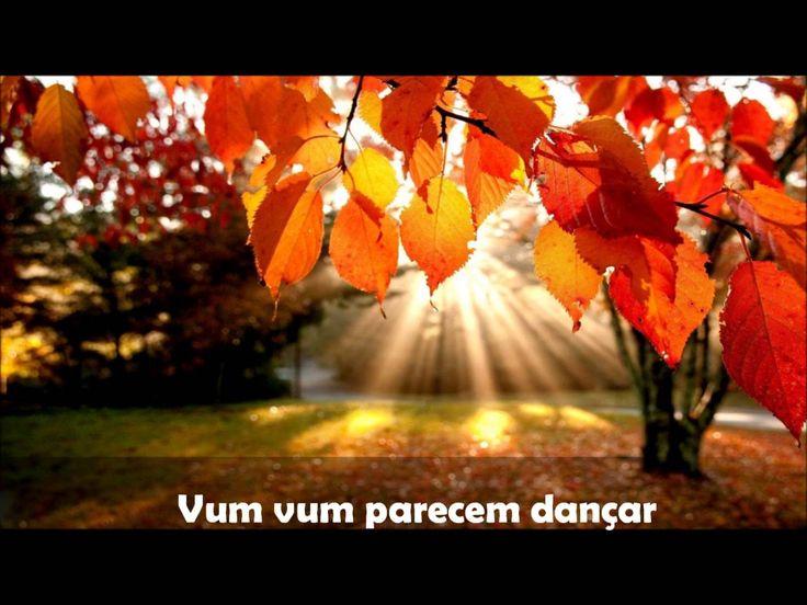 O outono a chegar