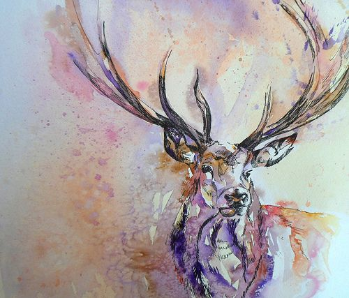 stag2 | Pen and wash on paper. I started this stag at Hurst … | Flickr