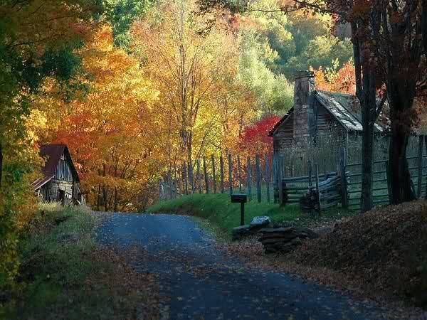 More Fall Country Scenes Fall Is In The Air Pinterest