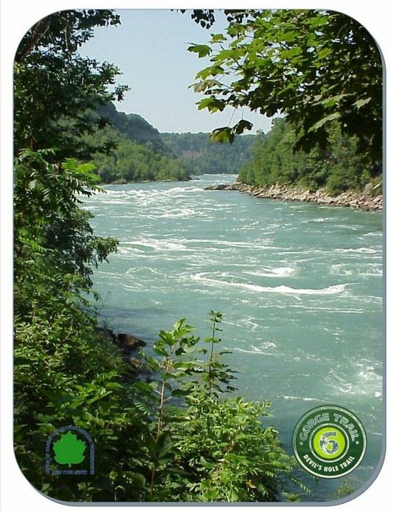 Trail #6 in the Niagara Gorge Trail System
