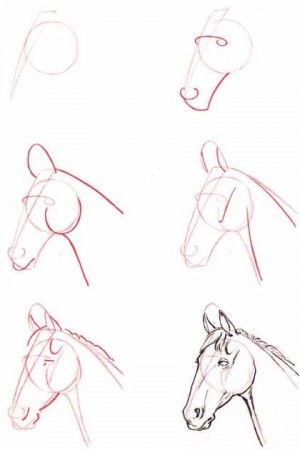 Ms de 25 ideas increbles sobre Tatuajes de caballos en Pinterest