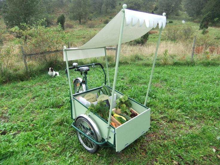 Bike selling organic veg, left with an Honesty Box. Rural Sweden.