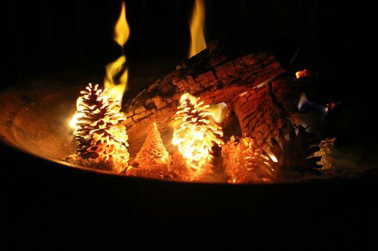 Firepit - Digital photography 2014