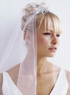 Updo with veil :  wedding Veil And Comb