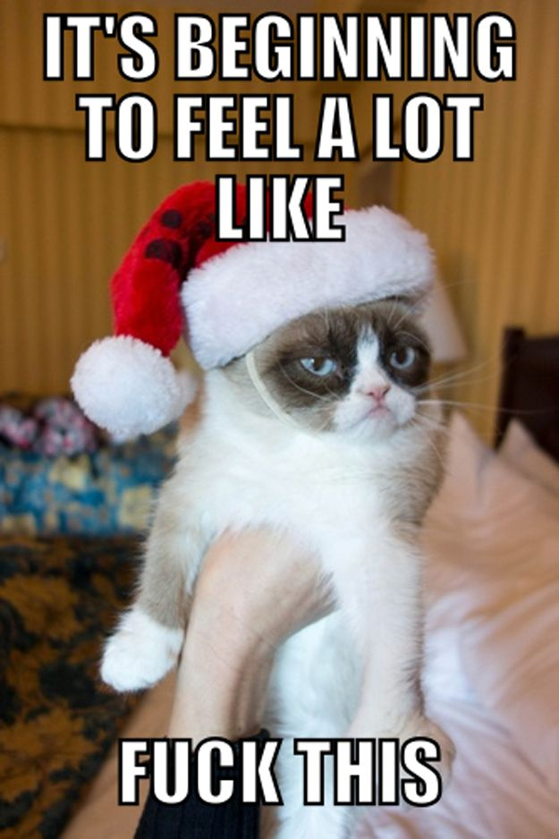 12 Days Of Grumpy Cat Christmas