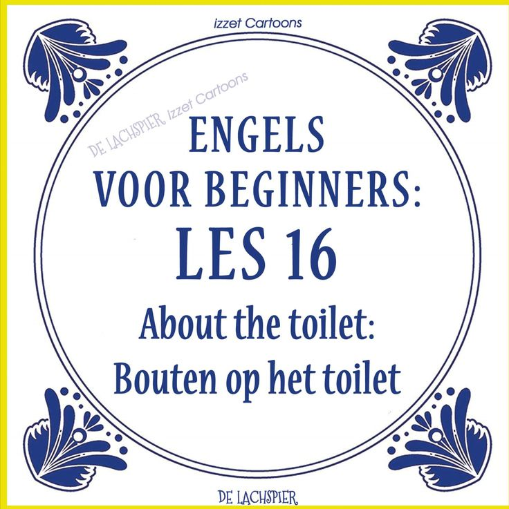 Translation of the Dutch explanation: Pooping on the toilet