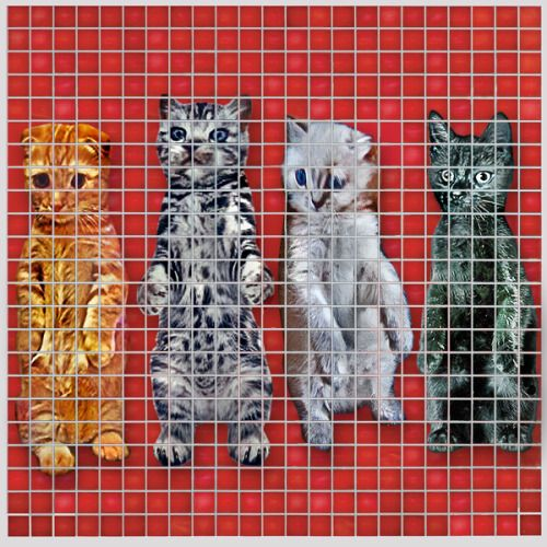 Meowing Heads - Moar Songs About Buildings and Catfood